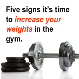Five Signs it's Time to Increase Your Weights in the Gym